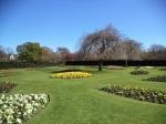 Saughton Park - gardens