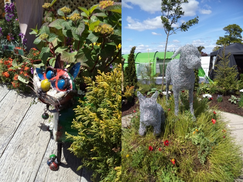 Cat and dogs at Gardening Scotland