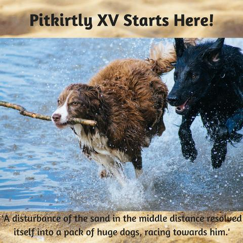Pitkirtly XV Starts Here!